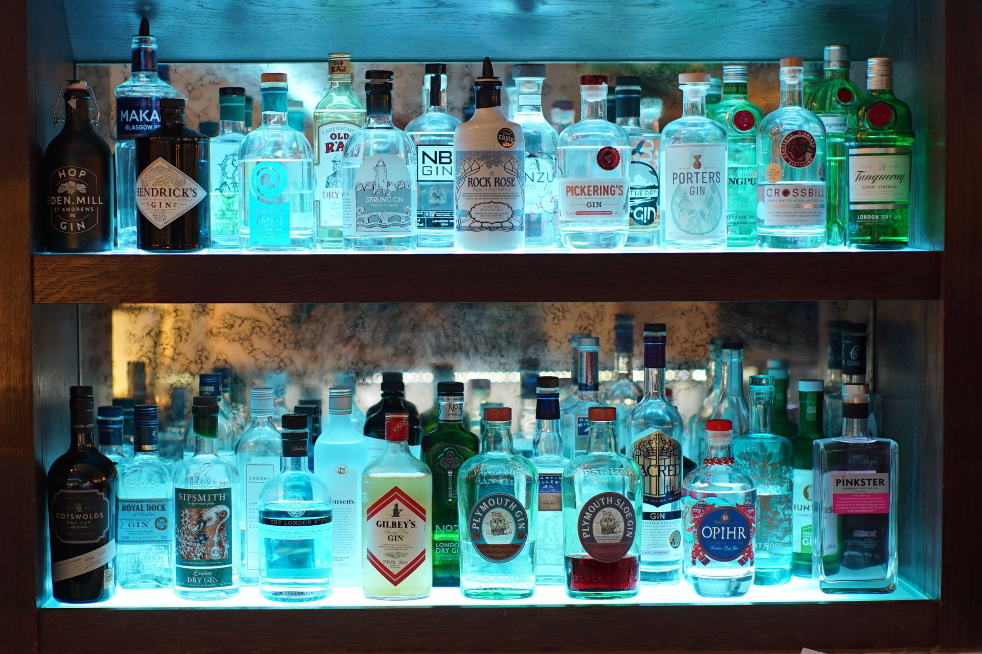 Gins at Alstons